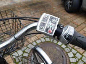 E-Bike Dreirad Pfau-Tec Primo Daum 8